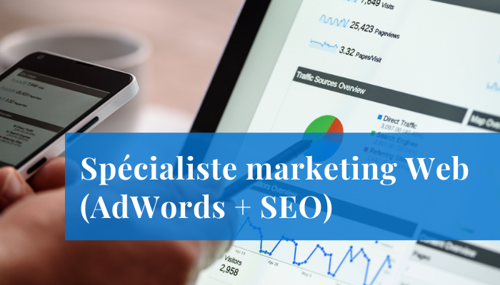 eb marketing adwords emploi mecart