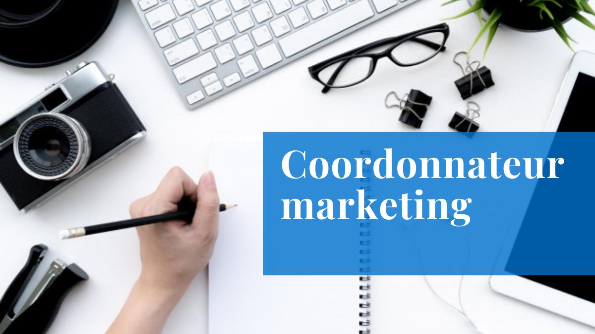 coordonnateur marketing emploi mecart